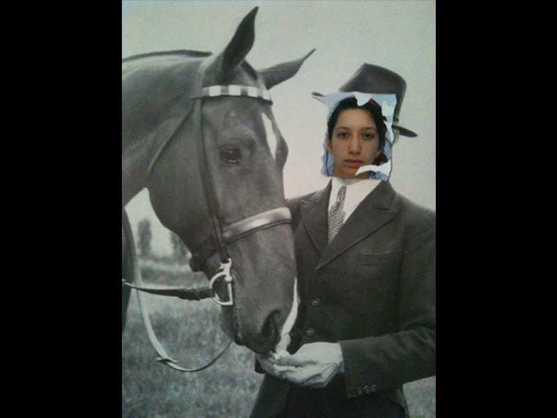 horse-02